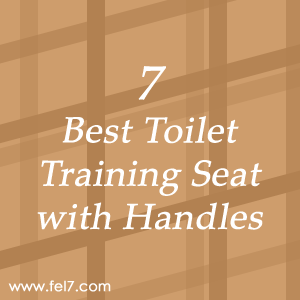 Toilet Training Seat with Handles